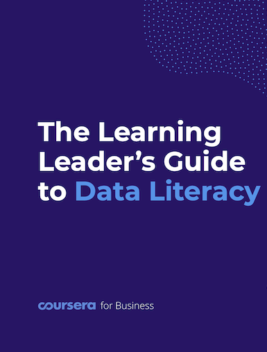 The Learning Leader's Guide to Data Literacy