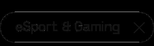 eSports & Gaming | Digital Summit 2021